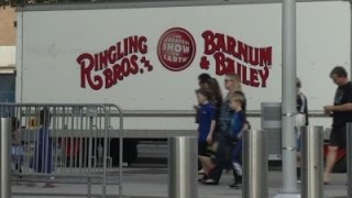 Download Circus Show-Goers React to Circus Closing Video