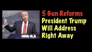 Download 5 Gun Reforms President Trump Will Address Right Away Video
