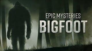 Download Epic Mysteries Bigfoot Video