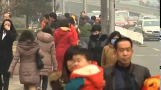 Download 年终报道:中国空气污染治理 Video