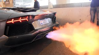 Download The BEST LAMBORGHINI AVENTADOR Engine SOUNDS Ever!! Video