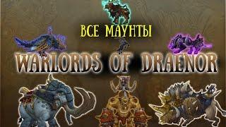Download ВСЕ МАУНТЫ Warlords of Draenor №1 [МАУНТФАРМ #4] Video