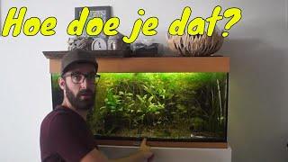 Download Aquariumbodem vervangen in een draaiend aquarium Video