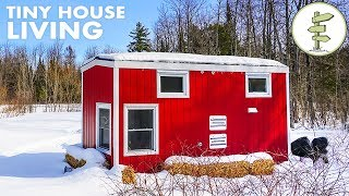 Download Woman Living in a Tiny House Loves the Small Space & Financial Freedom Video