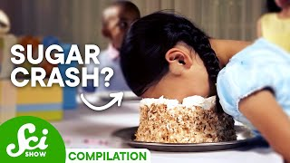 Download SciShow: Sugar Compilation Video