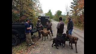 Download DUCK HUNTING 2017. Minnesota Opening Weekend. ″The Movie″ Video
