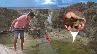 Download SAVING GOBY FISH with *HOMEMADE* FISH NET!!! Video