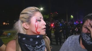 Download 9 Deadliest Leftist/Anti-Trump Attacks Video