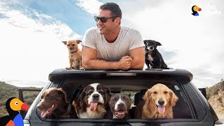 Download Man and SIX Rescue Dogs Travel The Country In His RV | The Dodo Video