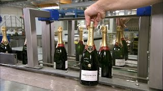 Download Pop the Bubbly! How Champagne is Made! Video