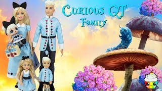Download Curious QT Family DIY Custom Fun Craft With Barbie Dreamtopia Royal Family Video