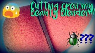 Download CUTTING OPEN MY BEAUTY BLENDER! || MissTaylorxo Video