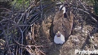 Download SWFL Eagles ~ Hidden Bonding 12.3.16 Video