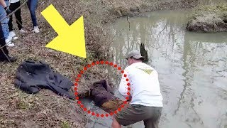 Download When This Guy Thought He Spotted A Giant Beaver Stuck In A Creek, He Quickly Sprang Into Action Video
