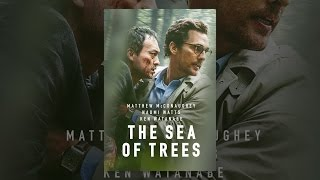 Download The Sea of Trees Video