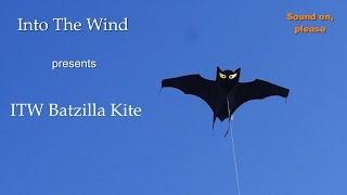 Download Into The Wind Batzilla Kite Video