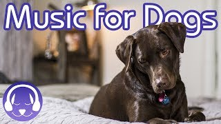 Download Music For Dogs: Relax Your Dog With Soothing Music (2019) Video