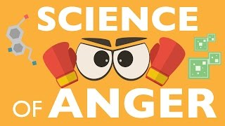 Download THE SCIENCE OF ANGER Video