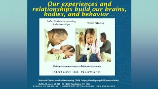 Download Violence as a Health Care Issue: Trauma-informed and Resiliency-promoting Care Video