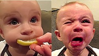 Download CUTE FUNNY BABY COMPILATION KIDS VINES PART 1 Video
