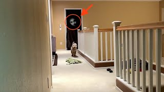 Download GHOST ACTIVITY CAUGHT ON CAMERA!! Video