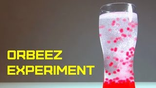 Download ORBEEZ water beads HYDROGEL - Experiments with Polymer water color balls Video