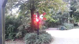 Download Jongen laat spoorbomen afgaan! Video