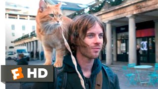 Download A Street Cat Named Bob (2016) - Bob's First Day Scene (5/10) | Movieclips Video