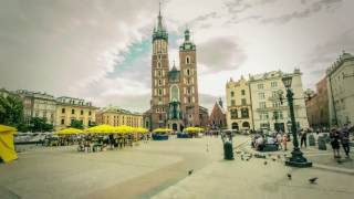Download Study In Poland with Scholarship | warsaw wroclaw universities | videsh consultz Video