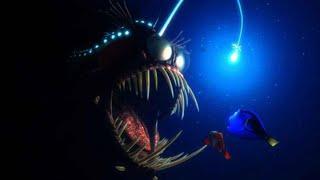 Download 오싹하고 흉폭한 바다괴물들! Video
