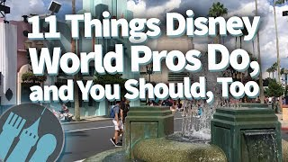 Download 11 Things Disney World Pros Do, and You Should, Too Video