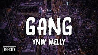Download YNW Melly - Gang (Lyrics) Video