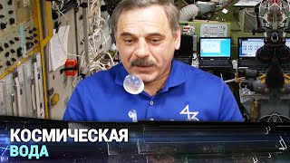 Download Как в космосе пьют Video