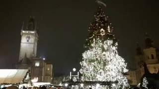 Download Christmas tree in Prague Video