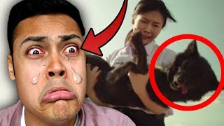 Download REACTING TO THE MOST SAD VIDEOS IN 2017 (YOU 100% WILL CRY) Video