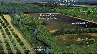 Download Agroforestry: Ecosystem Services and Wildlife Habitat Video