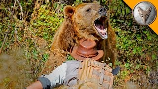 Download GRIZZLY BEAR ATTACK! Video