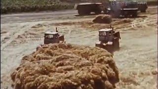 Download 1988 год. Уборочная в Карачаево -Черкессии.″Дон -1500″ против Fortschritt. Video