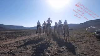 Download عرض هجن عشيرة الرضام بعيد الفطر المبارك لعام 1437 Video