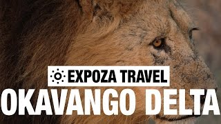 Download Okavango Delta Vacation Travel Video Guide Video