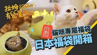 Download ►拉姆有幾噗◄ 超值福袋!日本貓咪福袋開箱┃Cat's lucky bag 2019 ☁ Video