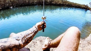 Download YBS Lifestyle Ep 13 - WORLD'S SMALLEST FISHING ROD CHALLENGE | Amazing Dolphin Encounter Video