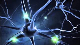Download ″MIRACLE″ NERVE REGENERATION - 16 Hz ALPHA BINAURAL BEATS MEDITATION MUSIC Video