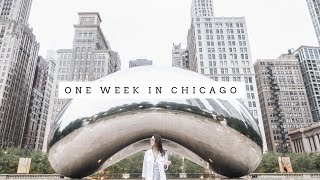 Download Weekly Vlog | One Week in Chicago Video