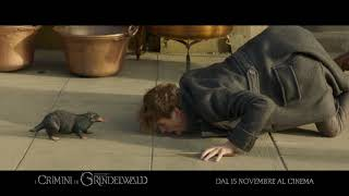 Download Animali Fantastici: I Crimini di Grindelwald - HUNT 30″ Video