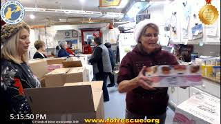Download Kitty Christmas 2019 Part 5 Friends of Felines Rescue Center (FFRC) Video