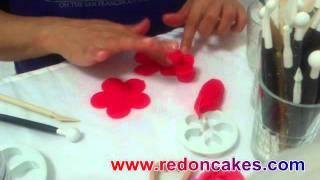 Download Rosa en Fondant redoncakes Video