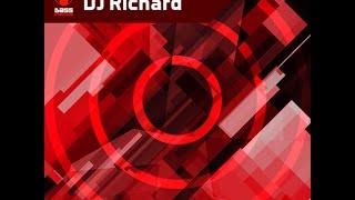 Download DJ Richard - BassGenerator 2016 Mix - Speed Garage & House'n'Bass Video