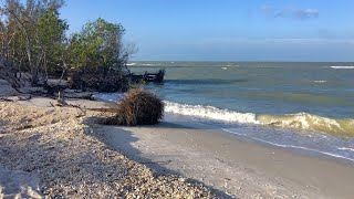Download Robb's Good Friday Morning Beach Walk in North Naples, FL 04.19.19 Video