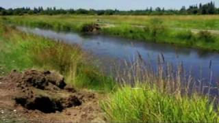 Download Following the Invasive Nutria in the Northwest Video